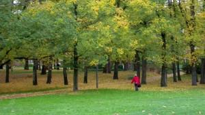 秋风词(英譯) Autumn Wind Tune